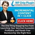 wpdrip_125x125