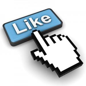 300 Facebook Fans